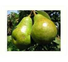 Pear Derriere's Art Print