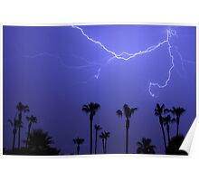 Palms Trees and a Lightning Thunder Storm Poster