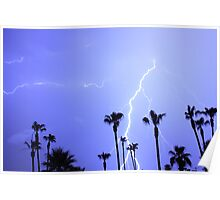 Tropical Palms Trees and a Lightning Thunder Storm, ll  Poster