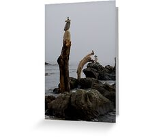 Cairn Family Greeting Card