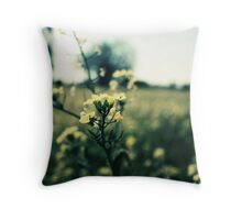 Tinted Yellow Throw Pillow