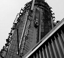 Top of the Empire State Building by lkippenbrock