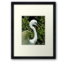 You Talk To Much © Framed Print