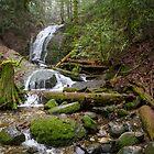 Coal Creek Falls by journeysincolor