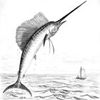 Sailfish - Charcoal   by Gordon Pegler