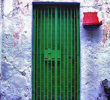 Green Door, v.3 by NawfalNur