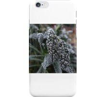 Frost on the calvero nero iPhone Case/Skin