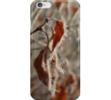 Winter's Touch iPhone Case/Skin