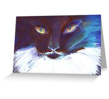 Feline Stare Greeting Card