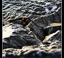 Rocks by Stephen Joso