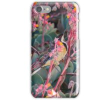 Colorful Breakfast for an Eastern Spinebill iPhone Case/Skin