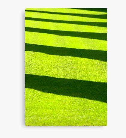 Grass shadow Canvas Print