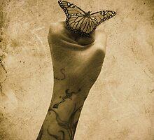 Power & Beauty by VoodooPlastik
