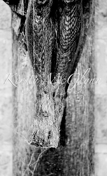 Christ Cobwebs by Kirsty McGlynn