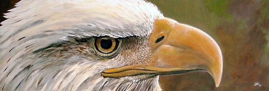Bald Eagle by Arie van der Wijst