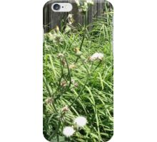 Backyard Grass iPhone Case/Skin