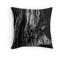 Old Wood Throw Pillow