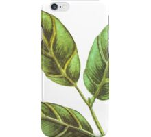 Bay leaf iPhone Case/Skin