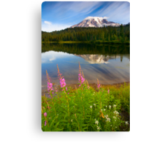 Fireweed Reflections Canvas Print