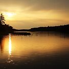 Sunset On Moon River by Debbie Oppermann