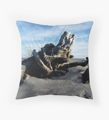 A taste of what's to come... Throw Pillow