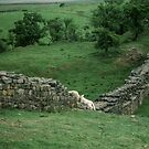 Marj watching lambs Hadrian's wall Milecastle England 198405260049 by Fred Mitchell