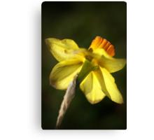 Daffodils Skirt Canvas Print