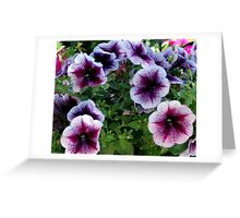 Stars In The Middle Greeting Card
