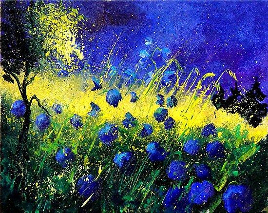 blue corn flowers by calimero