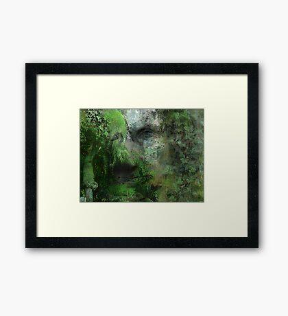 Quiet man Framed Print
