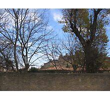 Chateau de Carcassonne entre les arbres Photographic Print