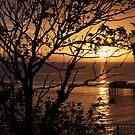 Sunrise 2 by ccrcats