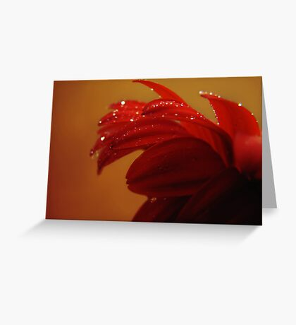 driven to tears Greeting Card