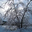 frozen delight by LoreLeft27