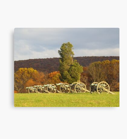 Harpers History  Canvas Print