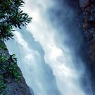 Ellenborough Falls by Bev Woodman