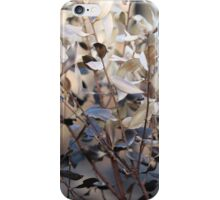 Girraween Scorched Bush iPhone Case/Skin