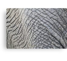 Elephant Skin - Natural Patterns and Textures Canvas Print