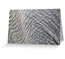 Elephant Skin - Natural Patterns and Textures Greeting Card