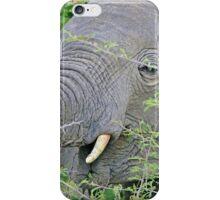 Elephant Hunger - Wildlife Happiness  iPhone Case/Skin