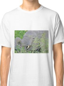 Elephant Hunger - Wildlife Happiness  Classic T-Shirt