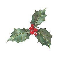 Festive Holly by nekoconeko