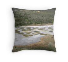 Spotted Lake (K'lilx) - Osoyoos BC Throw Pillow