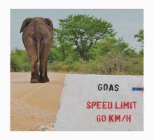 Elephant - Tourists go Slow Kids Clothes