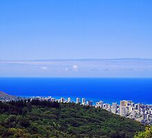 Blue Hawaii by Chad  Bracken