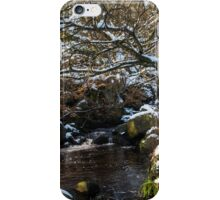 Burbage Brook in Winter iPhone Case/Skin