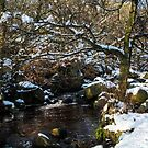 Burbage Brook in Winter by John Dunbar