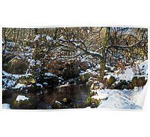 Burbage Brook in Winter Poster