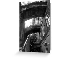 Stairing Close At You....... Greeting Card