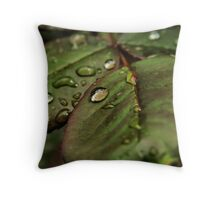 Tears from heaven Throw Pillow